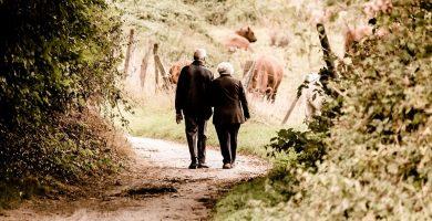 riesgo de caidas en ancianos